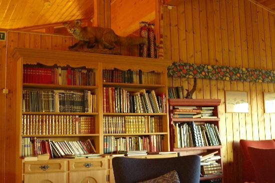 Hovringen, Norge: Lounge and library