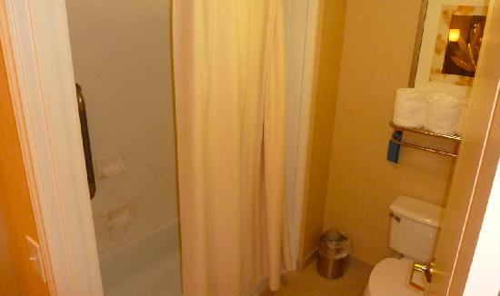 Homewood Suites Houston near the Galleria: The bathroom