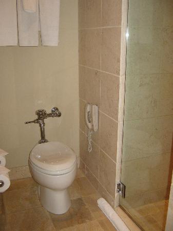 Hotel Teatro: Bathroom