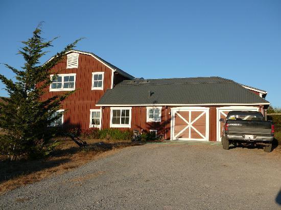 Lingonberry Farm Picture