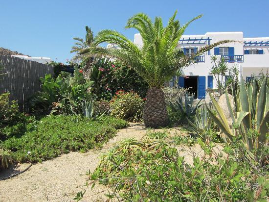 صن رايز هوتل: Sunrise Hotel, Mykonos, 2010