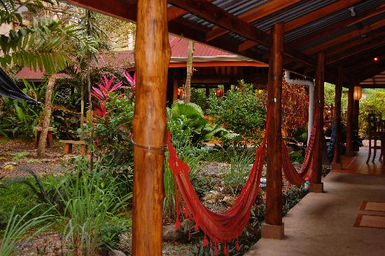 Casa Zen Guest House & Yoga Center: Patio Central