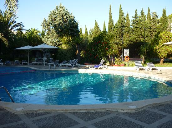 Hotel Illa d'Or : Pool area