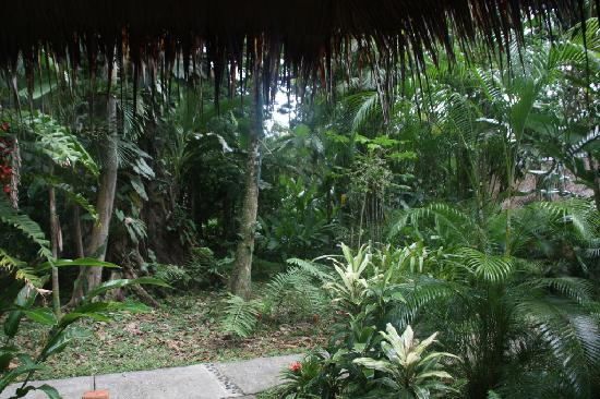 Hotel Shawandha Lodge: View from our cabin (#6)