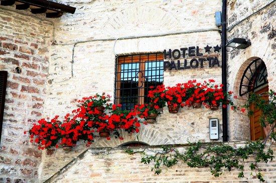 Hotel Pallotta Assisi: Ingresso Esterno
