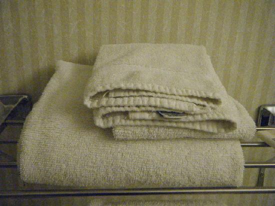 Microtel Inn & Suites by Wyndham Bethel: towels