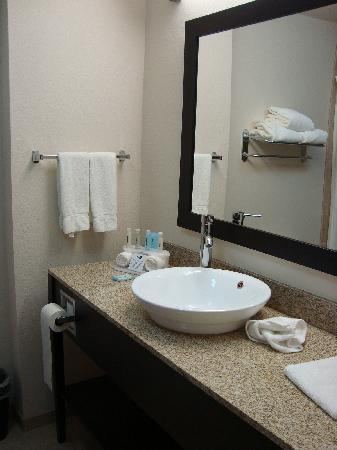 Holiday Inn Express Hotel & Suites Albuquerque Airport: Bathroom