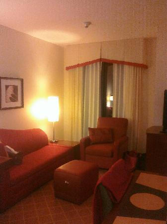 Residence Inn Chicago Lake Forest/Mettawa: Living room