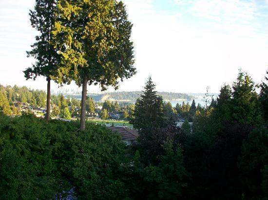 BayView Bed and Breakfast: Great view overlooking the city skyline