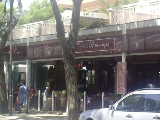 Hotel D'annunzio: great hotel