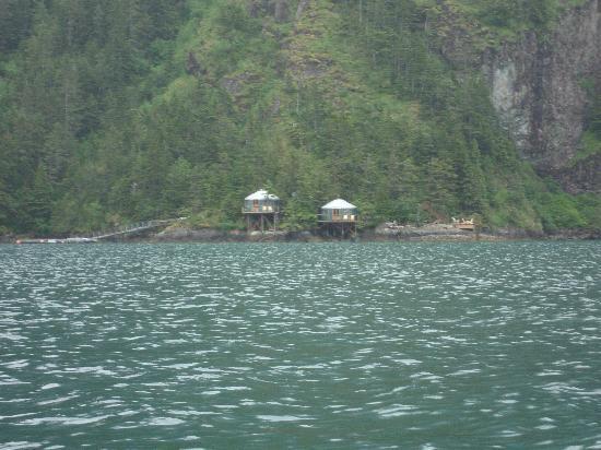 Orca Island Cabins: Yurts