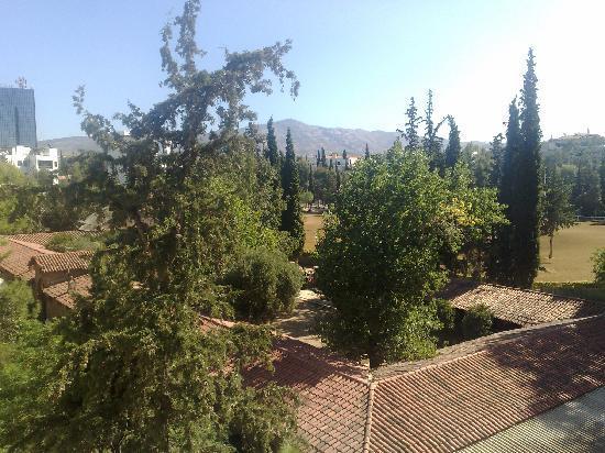 Athens Habitat: View