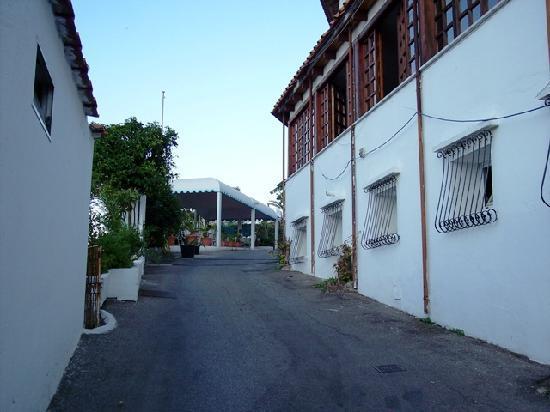 Hotel Terme Parco Edera : Il viale di ingresso