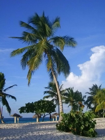 Guardalavaca, คิวบา: The beach at the hotel