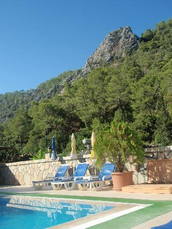 Canada Hotel Cirali Olympos: view from the pool
