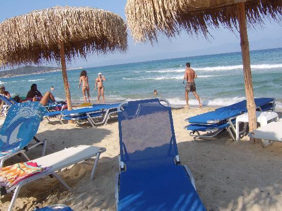 Greenotel: Sarti beach