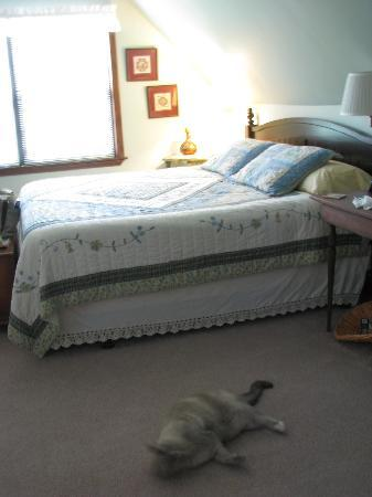 Skunk Ridge Farm Bed and Breakfast: We loved being greeted by the family pets!