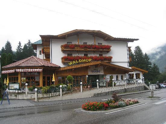 Hotel Der Waldhof: Hotel