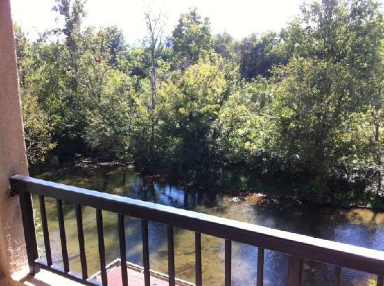 Appleview River Resort: View from the balcony
