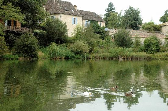 Chateau Gauthie: The Chateau, lake and tree house