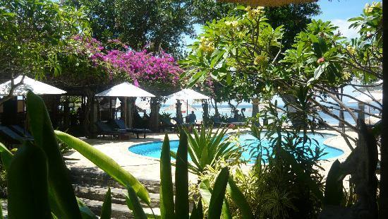 Matahari Terbit Bali Deluxe Bungalows : Pool