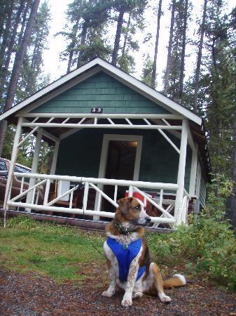 Cabin picture of johnston canyon resort banff tripadvisor for Johnston canyon cabins