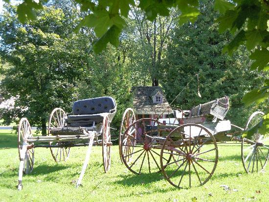 Creighton Manor Inn Bed and Breakfast: Wagons out back..