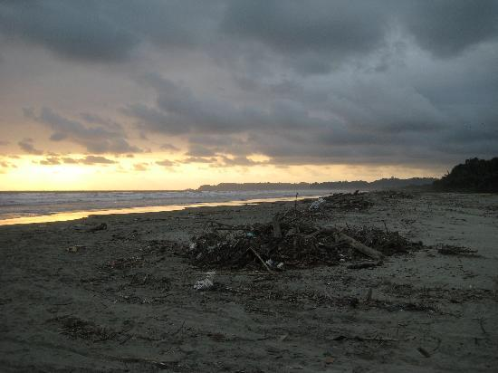 Hotel Galapagos: garbage on the beach