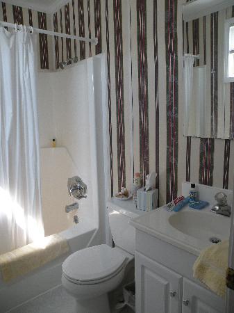 Adams Ocean Front Resort Motel and Villas : Bathroom