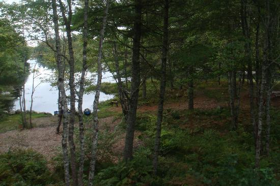 Roseway River Cottages: View of the bon fire area.