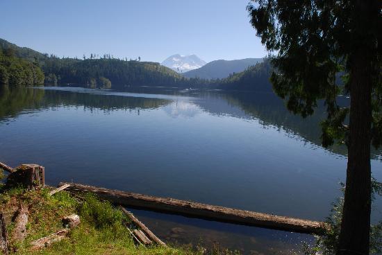 Mineral Lake Lodge: Mineral Lake and Mt. Rainier