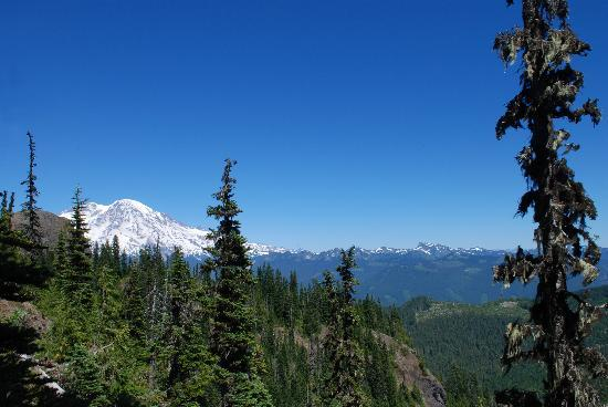 Mineral Lake Lodge: Hiking on Mt. Rainier