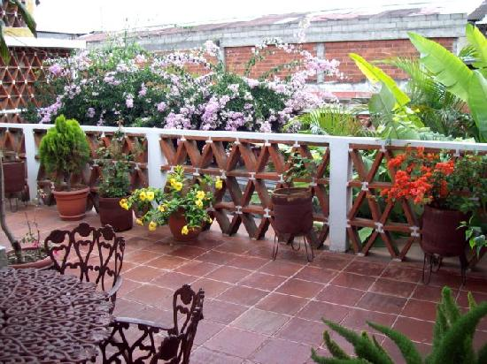 Posada Don Valentino: Beautiful flowers on the back terrace