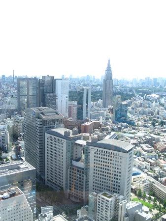 パークハイアット 東京, ジランドールからの眺め