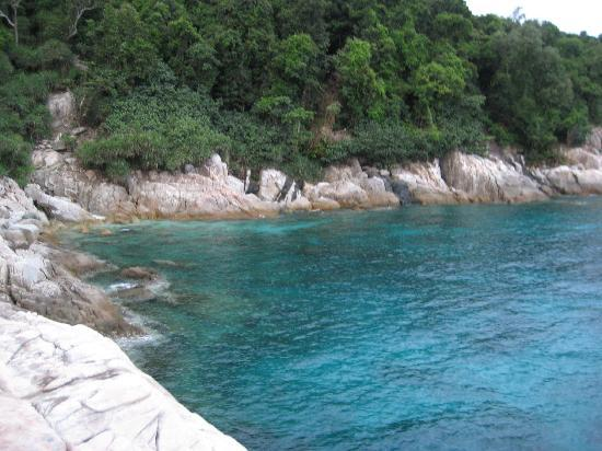 D'Coconut Lagoon: One of the snorkeling spot