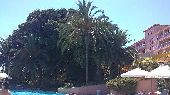 Na Taconera: vistas de la piscina