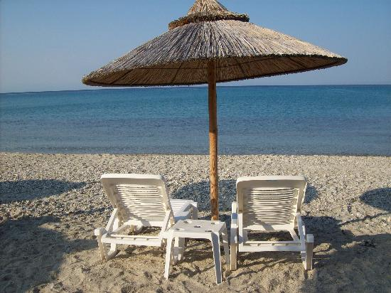 Hanioti Palace Hotel: our usual seat at the beach!