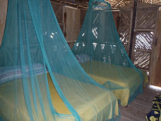 Dolphin Lodge Uaguinega : Interior