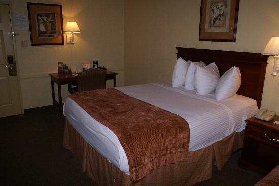 Baymont Inn & Suites Rock Springs: Zimmer