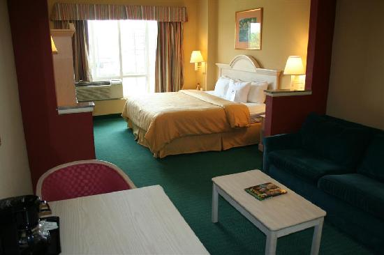 Comfort Suites at the University: Our large King Suite