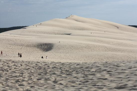 dune of pyla picture of dune du pilat la teste de buch tripadvisor. Black Bedroom Furniture Sets. Home Design Ideas