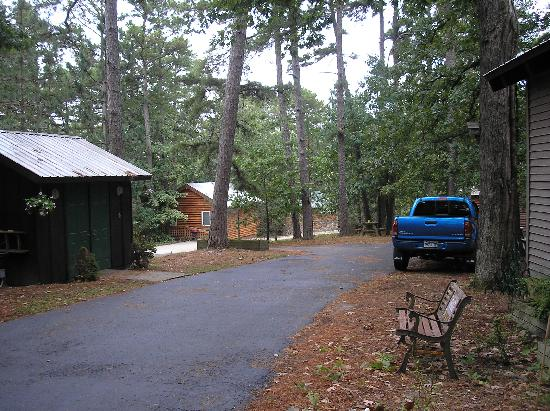 Dogwood Cottages: Cabins in the woods 1 (some have jacuzzis!)