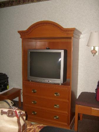 Ramada Inn: BIG TV....