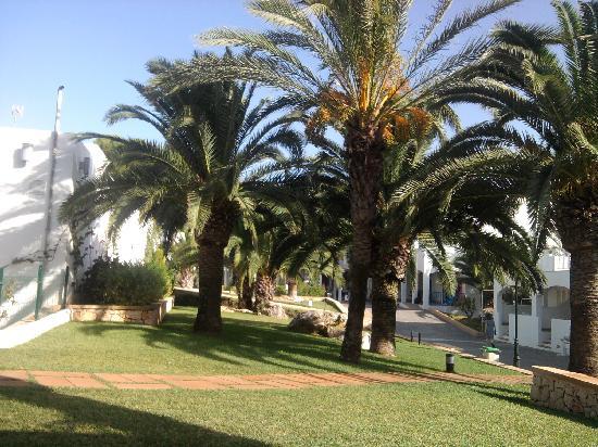 Club Calimera Es Talaial: ground floor view