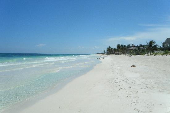 Cabanas La Luna: beach