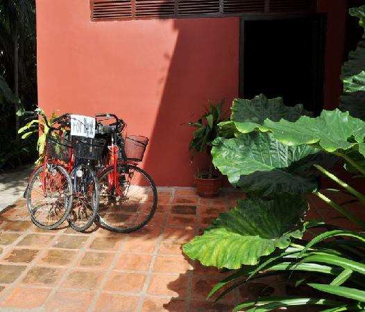 Alliance Villa: bicycles for rent.