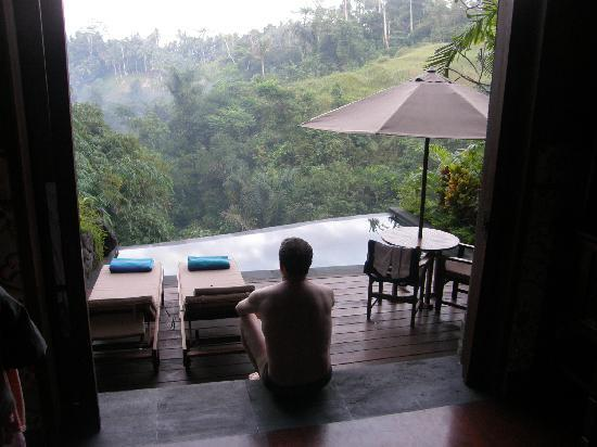 Bidadari Private Villas & Retreat: Our villa's view