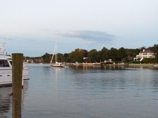 Saugatuck Harbor Inn: The harbor; protected and so picturesque.