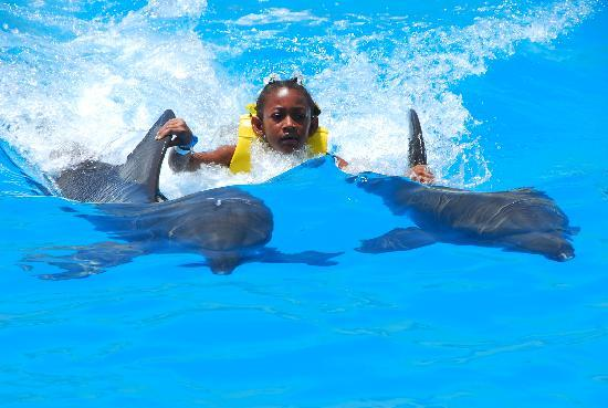 Dolphinaris Cancun: My daughter and dolphin