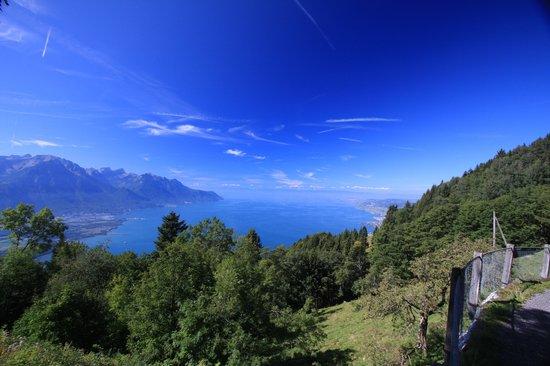 Veytaux, Switzerland: The View